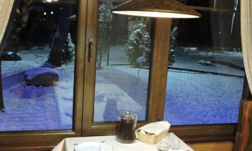 "Restaurant ""Kryve Ozero"""