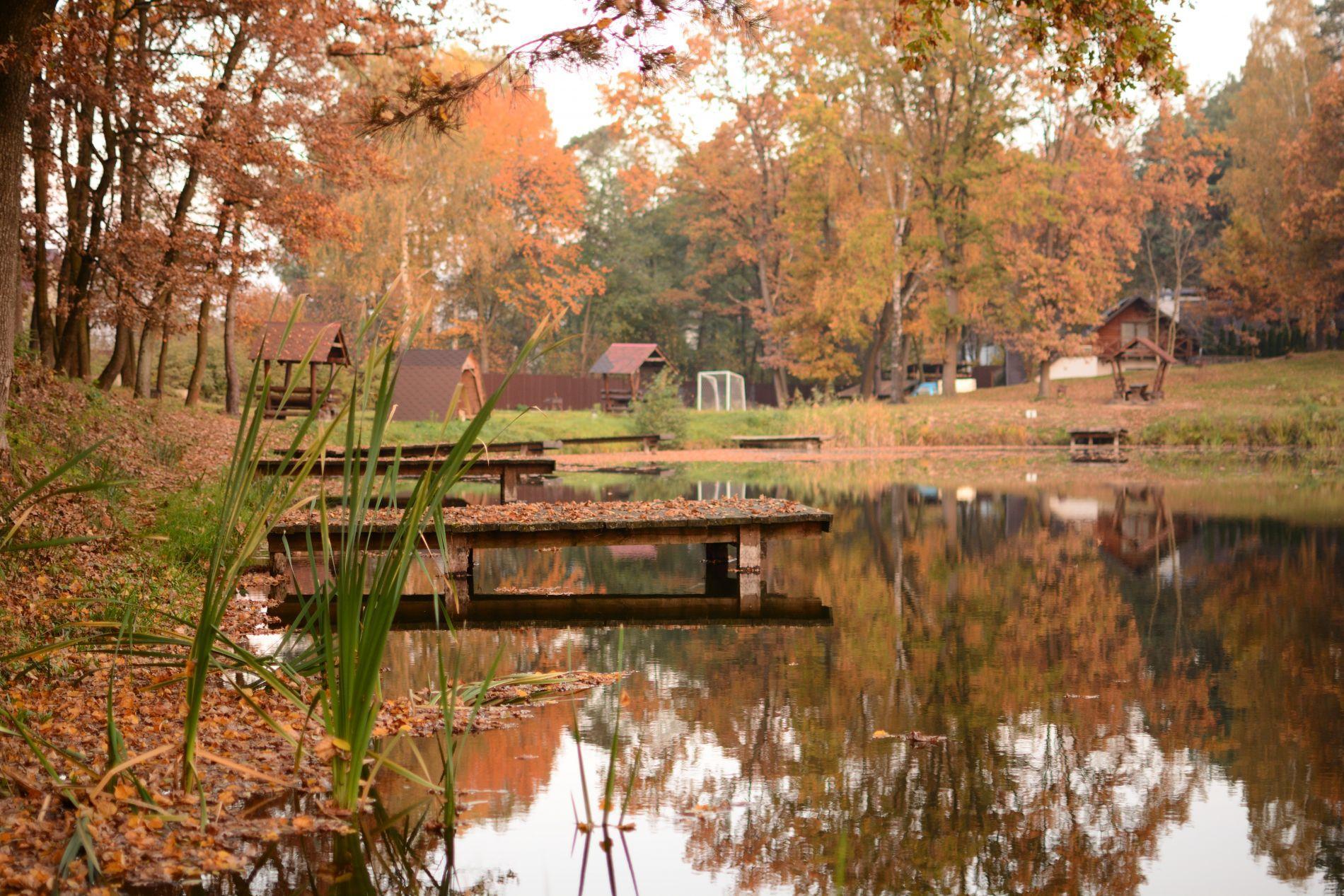 Озеро біля Львова. База відпочинку Львівська область. Наші цікаві події: риболовля біля Львова, баня на дровах, басейн, ресторан.